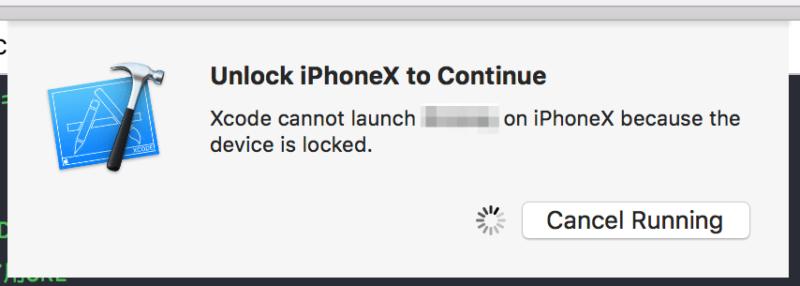 Unlock iPhoneX to Continue